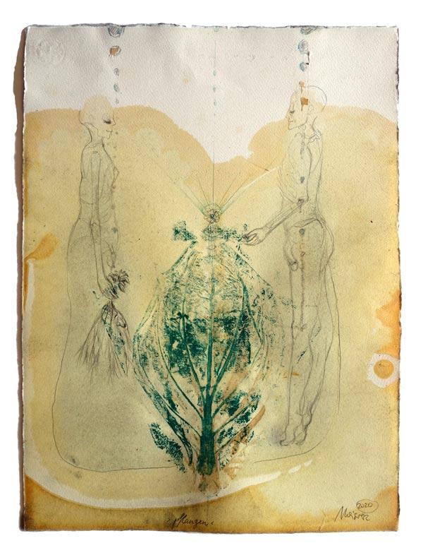 Pflanzen - 53 x 40 cm, 2020 / Graphitstift, Aquarellstift, Abdruck eines Blattes mit Linolfarbe auf präpariertem Papier