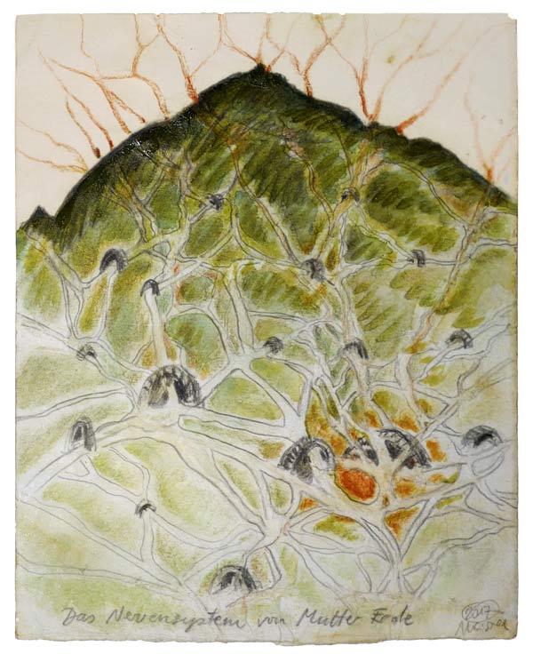 Das-Nervensystem-von-Mutter-Erde - 26,3 x 21,5 cm, 2017 / Graphitstift, Aquarellfarbe, Rötel, Schellack auf präpariertem Papier, Modellrahmen aus Holz, weiß geschlemmt 34,5 x 29,5 cm